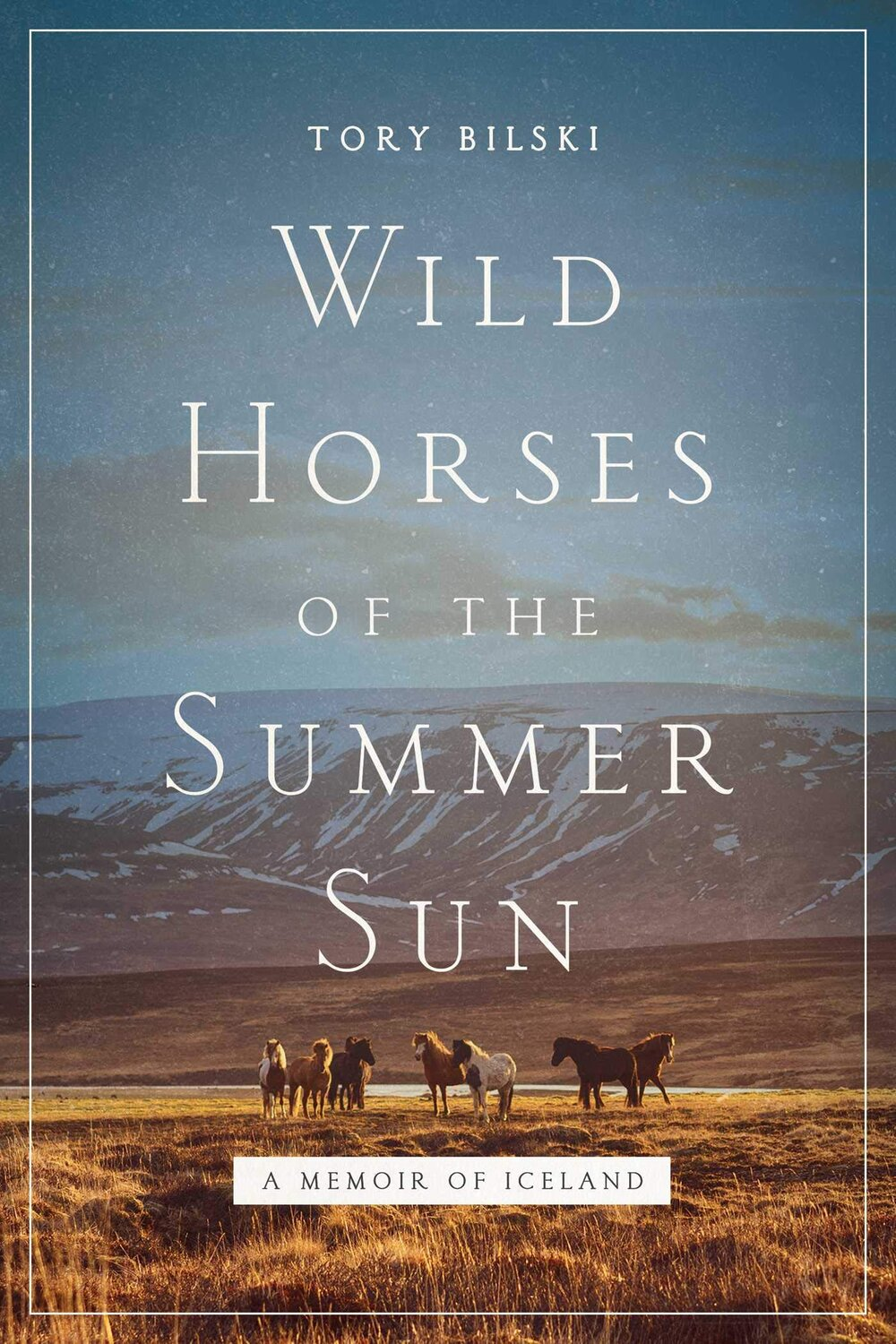 Wild Horses of the Summer Sun Book Review by ReInventing50s